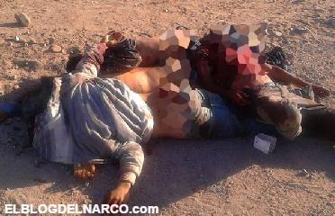 Dejan cuatro torturados y ejecutados en Salvador Alvarado, Sinaloa (Video)