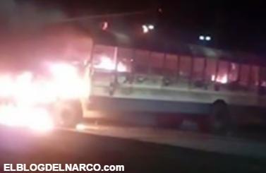 ejecutado tras enfrentamiento con Marinos en Reynosa