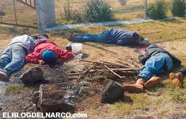 Ejecutan a 7 personas en Michoacán