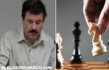 Vídeo, El Chapo juega al ajedrez solo...