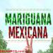 Vídeo documental de la Mariguana Mexicana