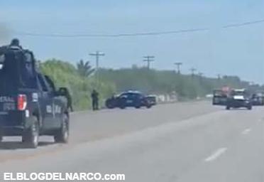 Vídeo en donde Sicarios del Cartel del Golfo atacan convoy de Federales en carretera de Matamoros