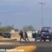 VIDEO: Sicarios intentan ejecutar a comandante de la policía y se desata balacera en La Paz Baja California Sur