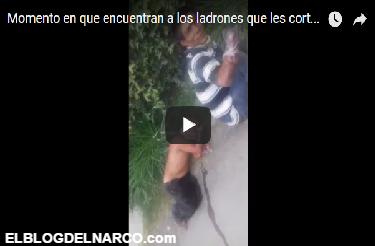Vídeo, así encontraron a los mutilados por el Cartel de Jalisco Nuevo Generación