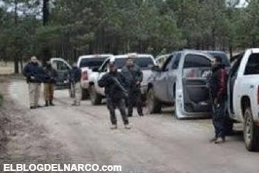 Eran más de 100 camionetas de sicarios, Vimos cómo Ellos recogían los cuerpos; los juntaron encima uno de otro en sus trocas
